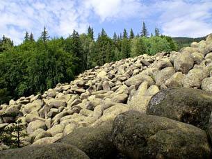 """Экологические программы Природного парка """"Витоша"""" на средства ЕС"""