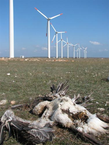 Калиакра – энергия за счет природы и налогоплательщиков