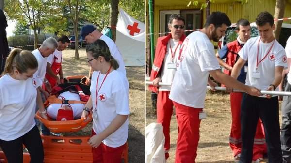 «КРАЙМОРИЕ-2017» – миссия волонтер