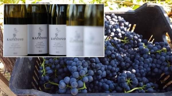 Трифон Зарезáн – праздник, который начинается с труда виноградарей и знаменуется бокалом вина за торжественным столом