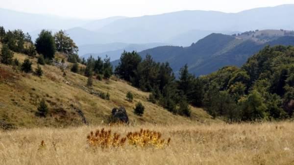 Горы Ржана-Планина – место, в которое влюбляешься
